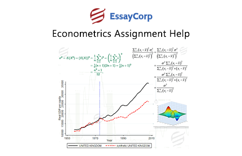 Are you facing challenges while solving the econometric assignments?