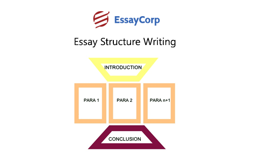 Help essay writing structure
