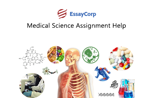 Why do students seek for Online Assistance with their Science Assignments?