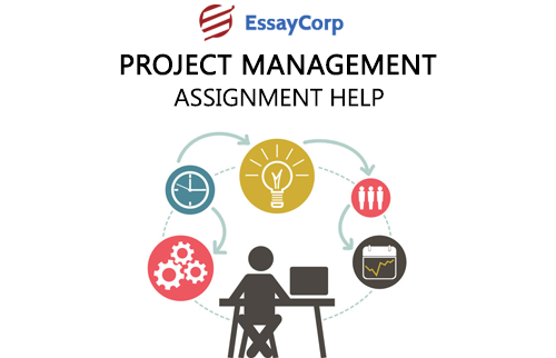 Process in project management