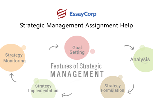 Strategic Management Assignment | Strategic Management Sample