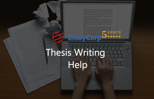 Master thesis writing help professional