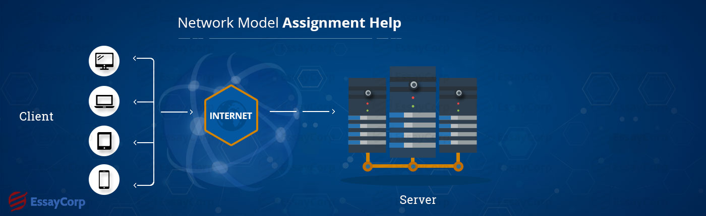 network model assignment help