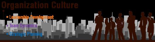 organization culture assignment help