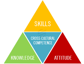 aspects-of-cross-cultural-management-assignment