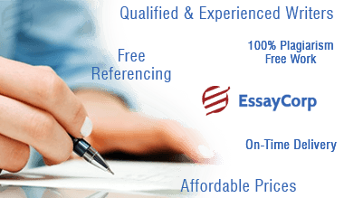 custom-essay-writing-service-2