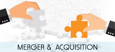 Merger and Acquisition - Finance Assignment Help
