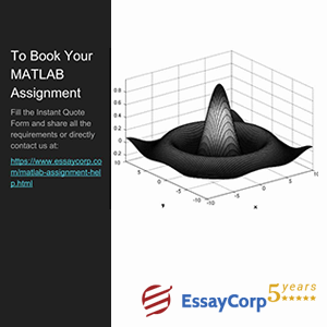 book your matlab assignment