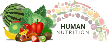 human nutrition assignment help