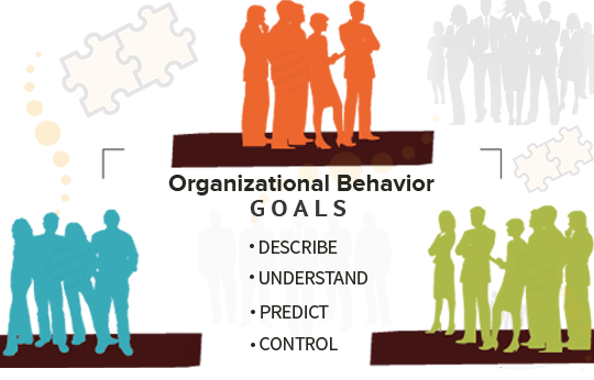 study on organizational citizenship behavior management essay Indeed, organizational citizenship behavior is the term that compilation of individual behavior in a team setting in the other words, organizational citizenship behavior is attached to employee effectiveness, work productivity and other elements that can affect a business in the short term and long term basis.