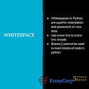 whitespaces in python