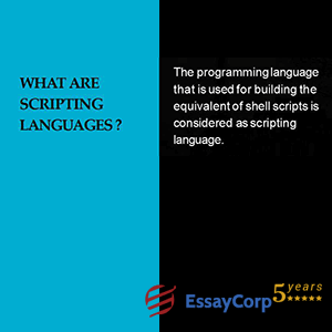 what are scripting languages?