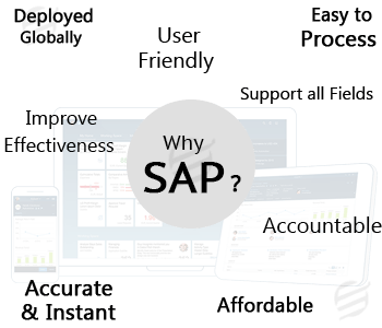 difficulties associated with sap assignments